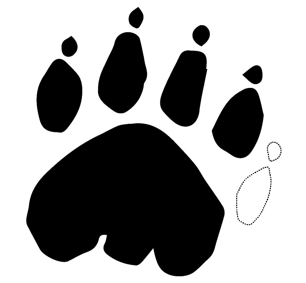 patte-thyla